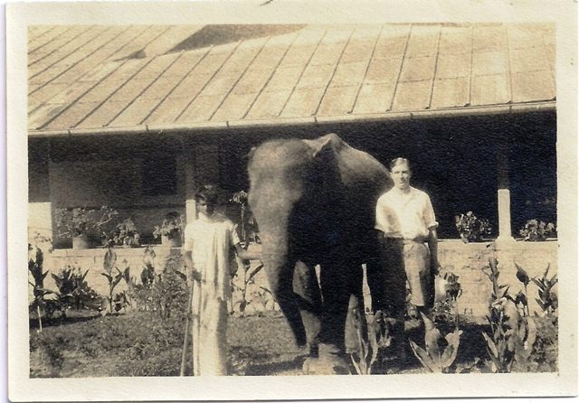 Dougal and the Baby Elephant Ceylon St Edmund Aug 1928